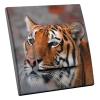 Interrupteur décoré Tigre