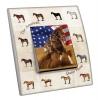 Interrupteur décoré  USA - Quater Horse