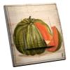 Interrupteur décoré Melon